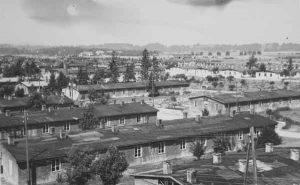 Die Baracken des DP-Lagers Pocking-Waldstadt | View of the barracks of DP camp Pocking-Waldstadt